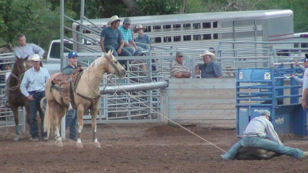 Gunlock Rodeo Results (Night 2)
