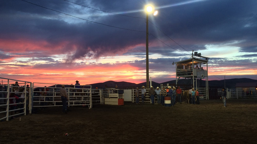 Enterprise Rodeo Day 1 Results