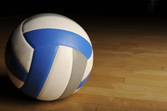 Enterprise Women's Stake Volleyball