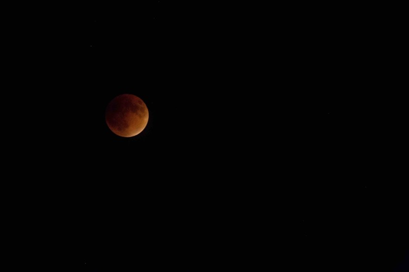 "Super ""Blood Moon"" Eclipse Was Worth the Wait"