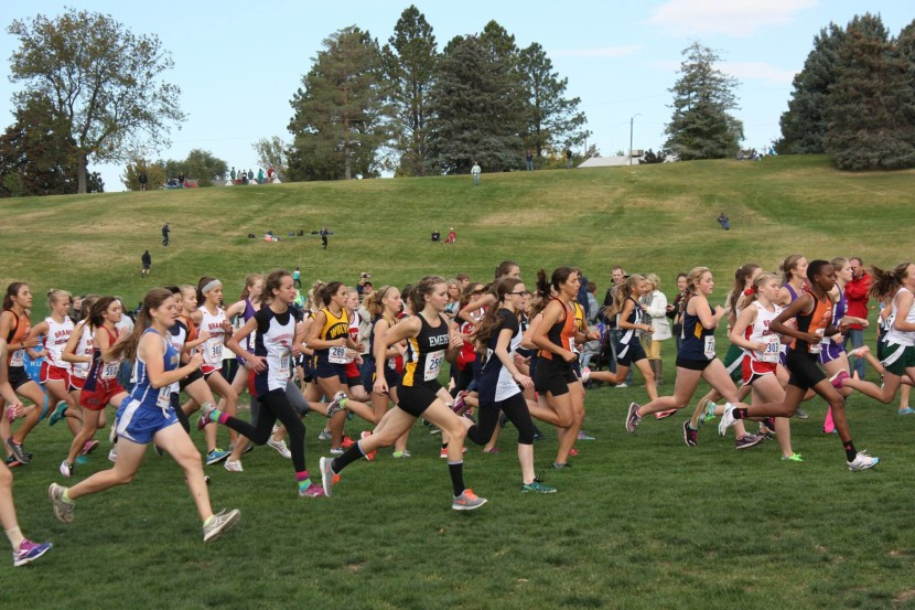 2A State Cross Country Results