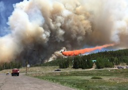 Dixie National Forest - Brian Head Fire