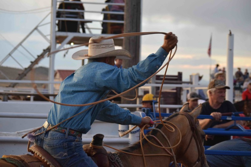 Enterprise Rodeo Day 3 Results